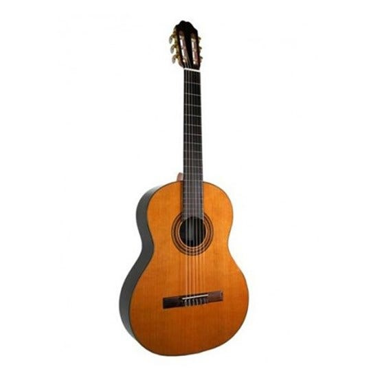 Katoh Classical Guitar MCG50S Solid Spruce Top.  Full Size