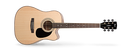 Cort AD880CE Acoustic Electric Guitar, Natural. Inc Bag