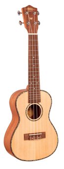 1880 Ukulele Co - Concert 200 Series
