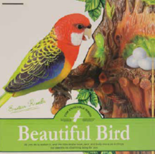 Beautiful Bird Talking/Repeating Parrot $14.95