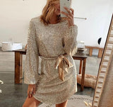Sequined Belted Party Dress