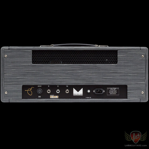 Morgan Amplification Custom Shop 30/800 Head - Twilight (24A)