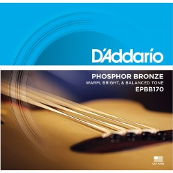 D'Addario EPBB170 Phosphor Bronze Acoustic Bass Strings 45-100 - Available at Lark Guitars
