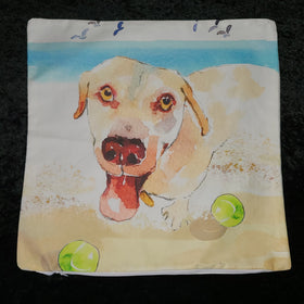 Pillow Cover - Boomer