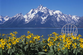 The Grand Tetons and Mrs. Davis' Chair in Wyoming