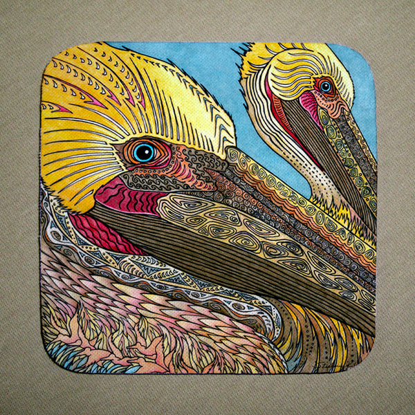 Coasters - The Pelicans