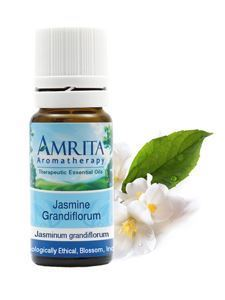 Jasmine Grandiflorum Abs. 1 ml