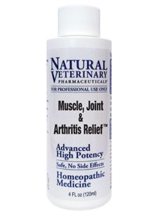 Muscle, Joint & Arthritis Relief 4 oz