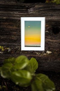Mini Tofino Prints