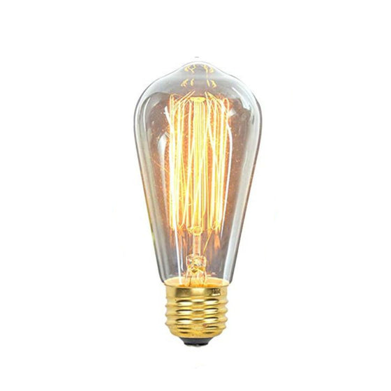 Edison Bulb Squirrel cage