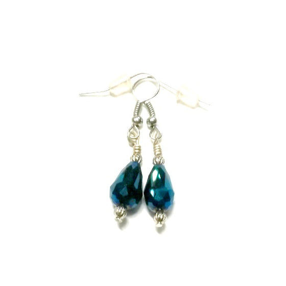 Blue Crystal Earrings