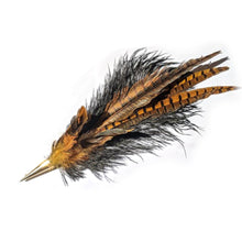Brown and Black Feather Plumes