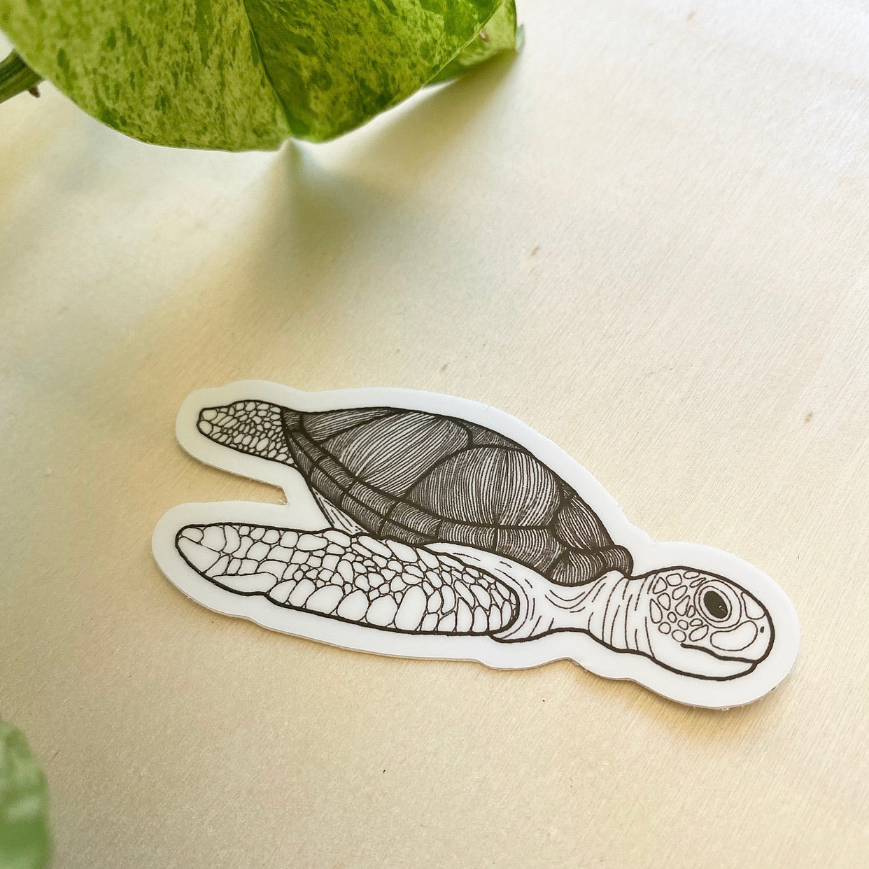 SEA TURTLE - vinyl sticker
