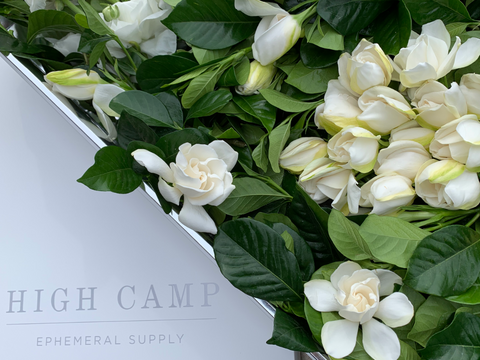 gardenias in a white box with High Camp Supply logo pictured