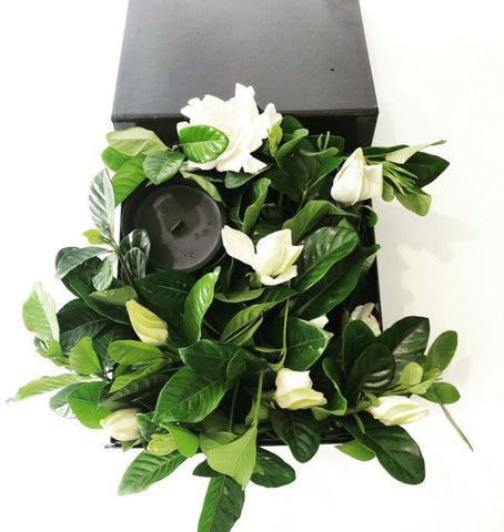Box of gardenias with black candle