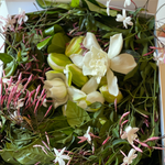 """Martinique"" Vine & Bloom Box"