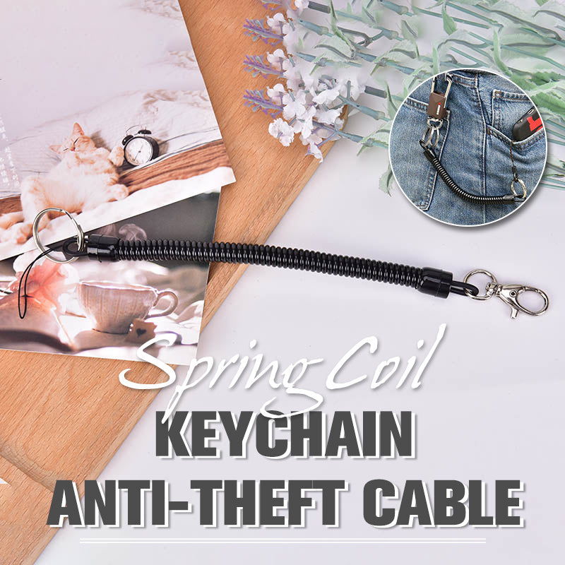 Spring Coil Keychain Anti-theft Cable
