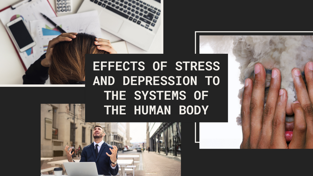 Effects of Stress and Depression to the Systems of the Human Body