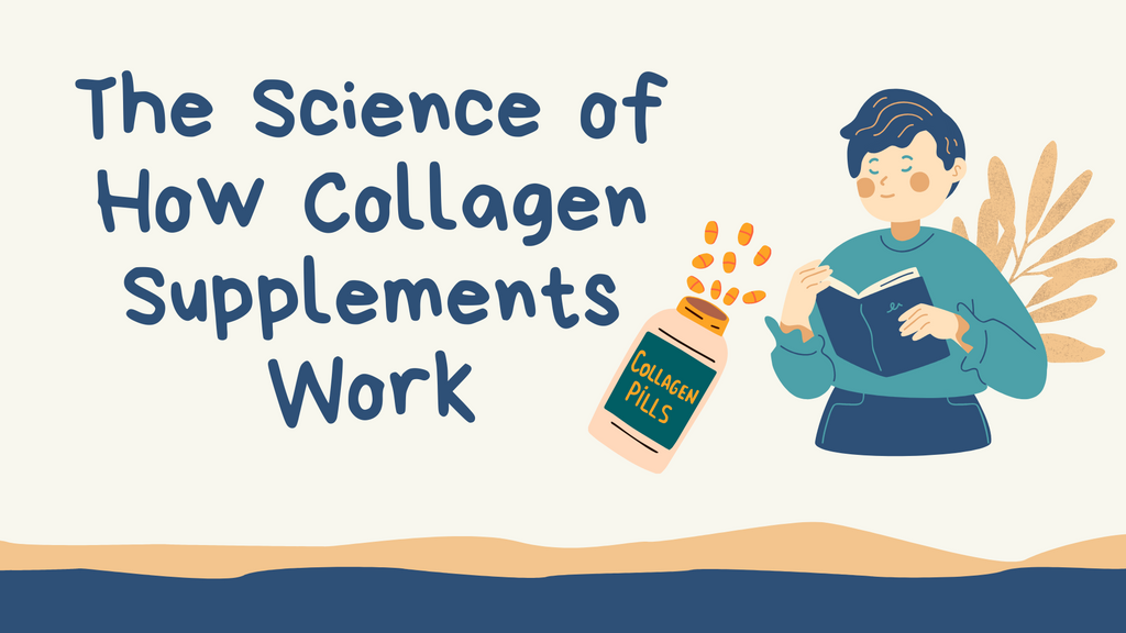 The Science of How Collagen Supplements Work