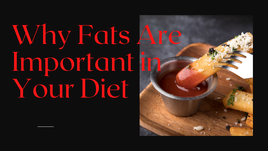 Importance of Fats in your Diet