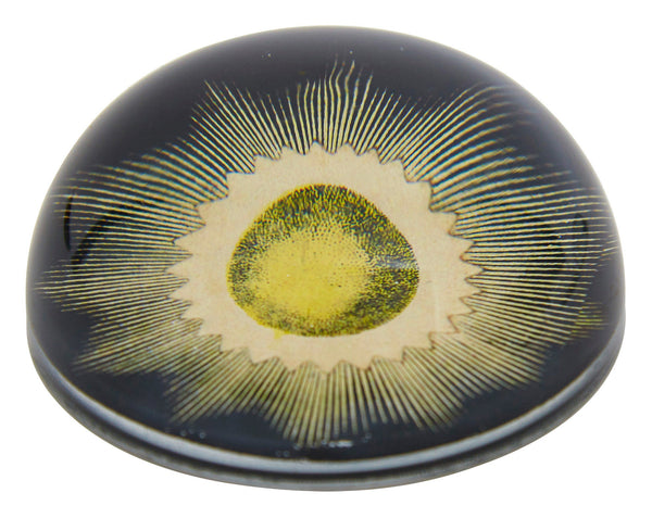 Eclipse II Paperweight