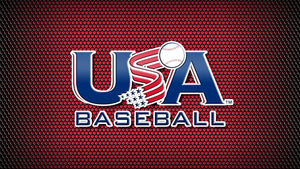 Baseball USA Diamond Painting Kit - DIY