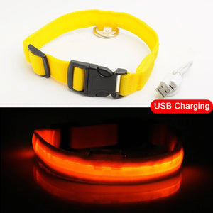 LED Dog Collar - USB Rechargeable