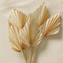 Load image into Gallery viewer, Dried Palm Spears - Set of 5