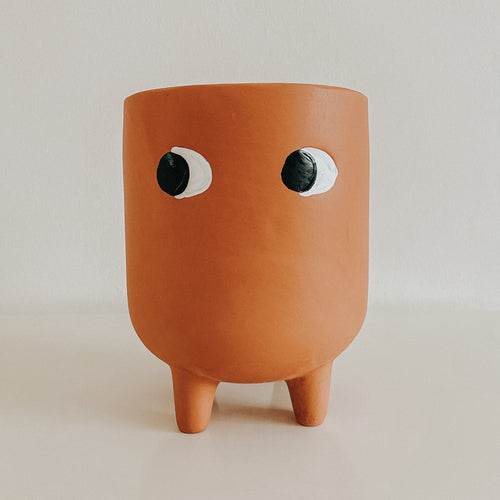 Sass & Belle Leggy Terracotta Planter