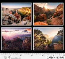 Load image into Gallery viewer, P&B Canyons Panel
