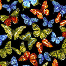 Load image into Gallery viewer, Butterfly Black/Multi