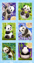 Load image into Gallery viewer, Panda Block - Blue (PANEL)