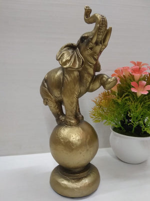 Buy Jumbo doing a feat on a ball showpiece  Ny246 Online