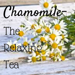 Chamomile: The Relaxing Tea