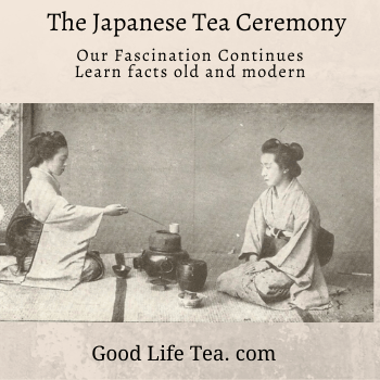 Our Fascination with the Japanese Tea Ceremony