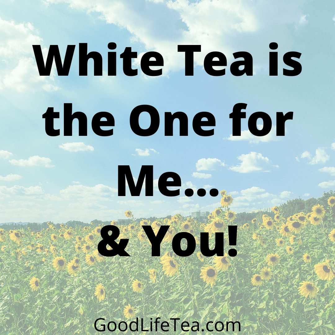 White Tea is for Me... & You!