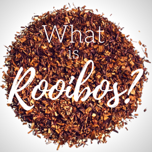 Have You Heard of Rooibos?