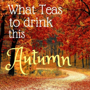 What Teas to Drink this Autumn
