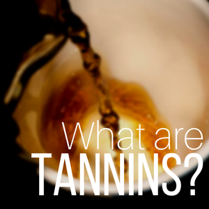 What are Tannins? Why are they in my tea?