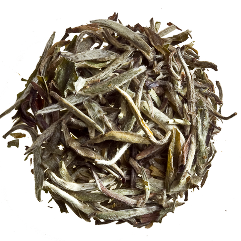 silver needles loose tea white tea