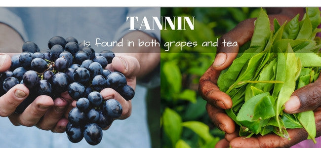 Tannin - Why does my tea get bitter