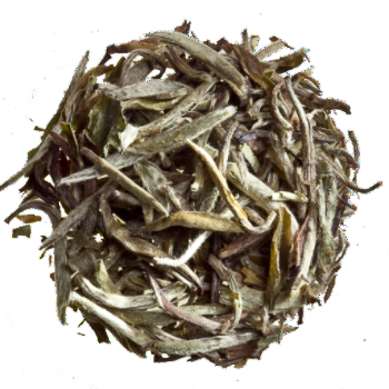 Organic Silver Needles - (Bai Hao Yin Zhen) white loose tea