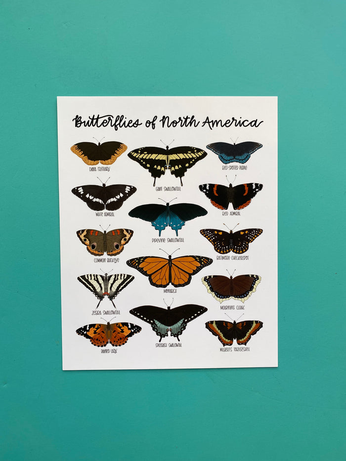 Field & Forest Design - Butterflies of North America