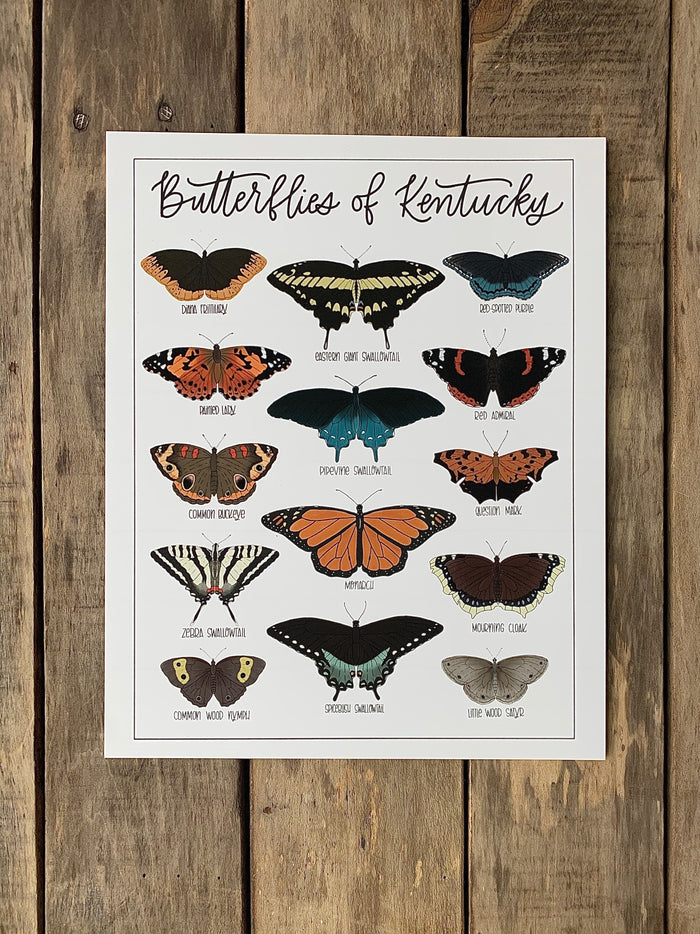Field & Forest Design - Butterflies of Kentucky