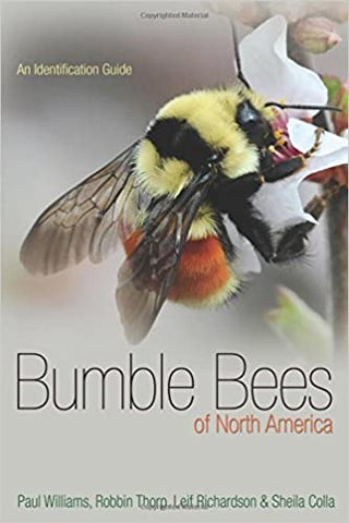 Bumblebees of North America