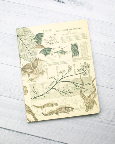 Evolution Softcover Journal