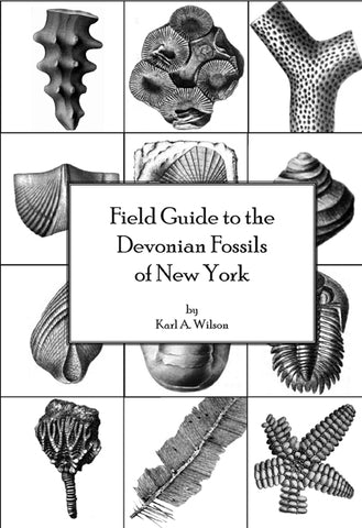 Field Guide to the Devonian Fossils of New York