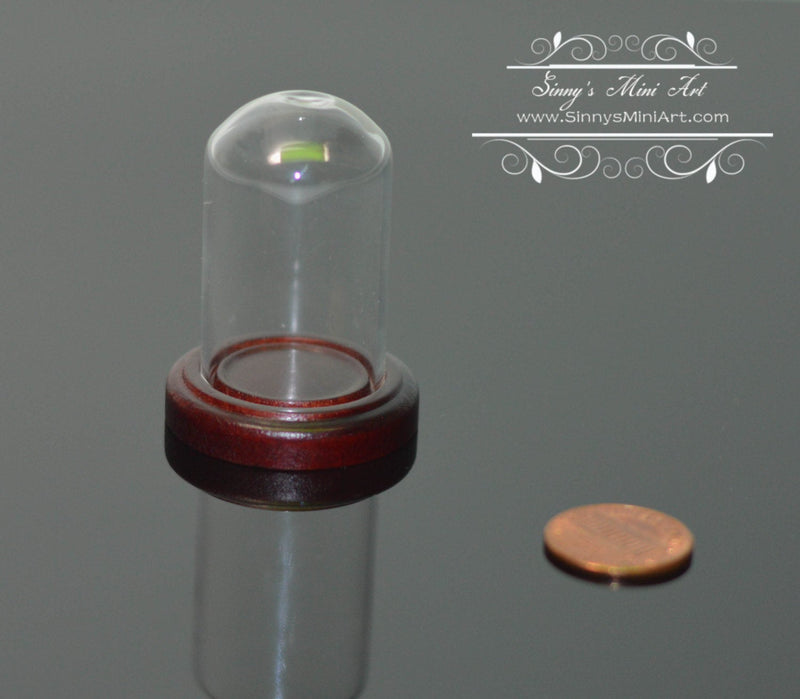 Miniature Glass Dome Display on Wood Base BD SC020