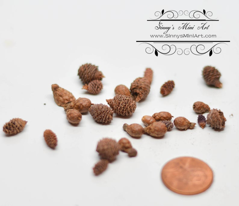 Discontinued 1:12 Dollhouse Miniature Pine Cones, Assorted Sizes BD H080