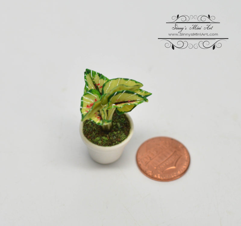 1:12 Dollhouse Miniature Assorted Green Flowers in Clay Planter HMN 519